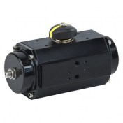PneumPneumatic Actuator type S - TruTorq